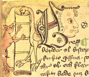 codex4_20