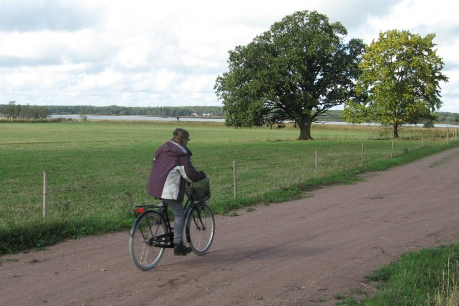 Niran Baibulat Photo: Pirre Naukkarinen